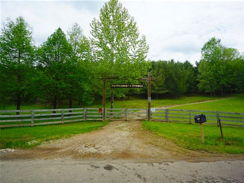 Joy Rd - 75 Acres : Chesterhill : Athens County : Ohio