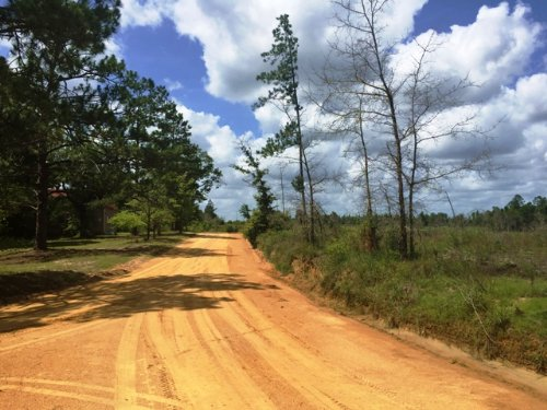 Summertown Church Road West Tract : Summertown : Emanuel County : Georgia