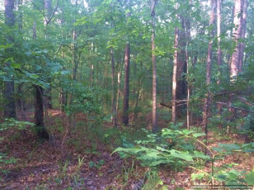 2± Acre Residential Lot : Pearl : Rankin County : Mississippi