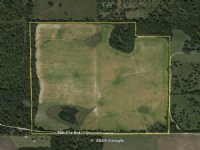 160 Acres Agricultural / Homesite : Madison : Madison County : Florida