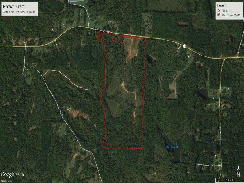 100 Ac Recreational / Timber Tract : Forsyth : Monroe County : Georgia