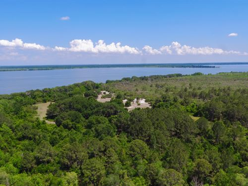 Lake Griffin Preserve : Fruitland Park : Lake County : Florida
