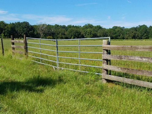 20.3 Gorgeous Fenced Ac High & Dry : Brooksville : Hernando County : Florida