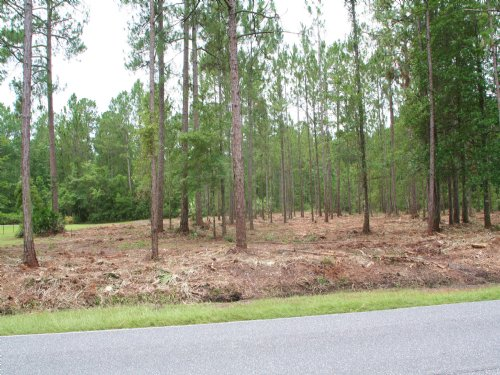 2.73 Acres - Old Plank Rd : Jacksonville : Duval County : Florida