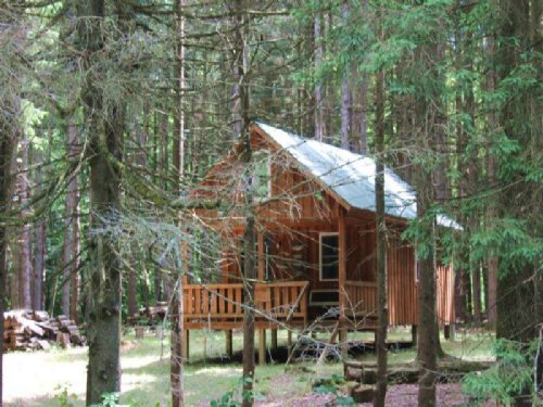 Cabin Across From State Forest : Florence : Oneida County : New York