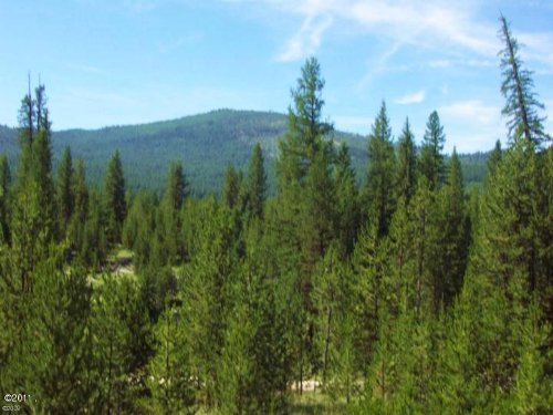 Morning Star Ranch 28.34 Acres : Marion : Flathead County : Montana