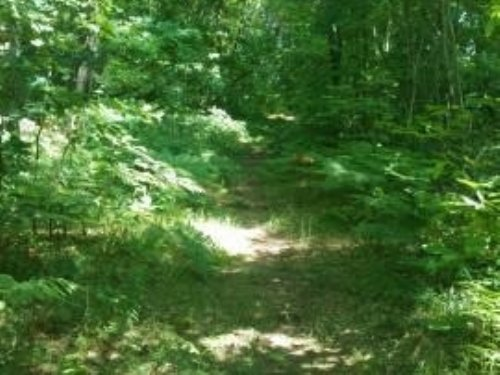 13 Acres On The Muskegon River : Muskegon County : Michigan