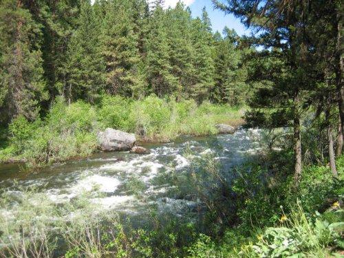 Salmon Run Lot 3 : Seeley Lake : Missoula County : Montana