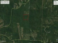 40 Ac Tract W/ Huge Potential : Forsyth : Monroe County : Georgia