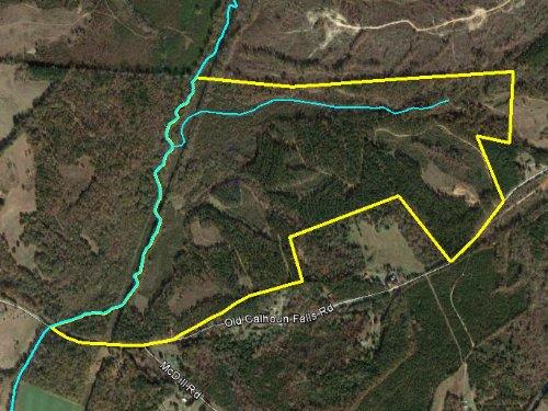 Calhoun Creek Tract : Abbeville : South Carolina