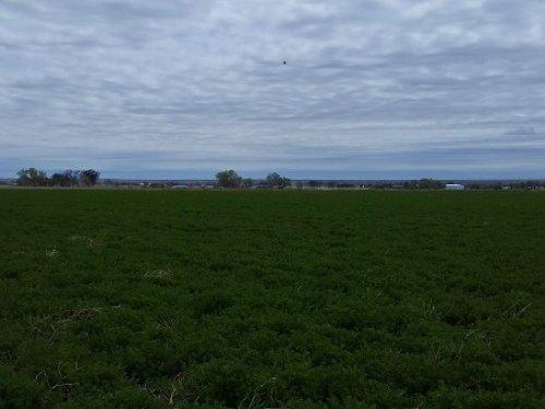 80 Acre Farm : Las Animas : Bent County : Colorado