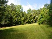 Butler Estates Lots : Tallassee : Elmore County : Alabama
