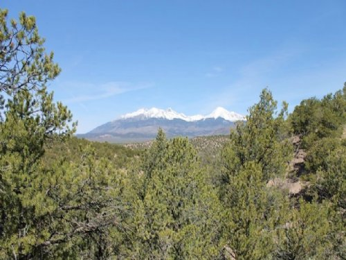 5.29 Acres Sangre De Cristo Ranches : Fort Garland : Costilla County : Colorado