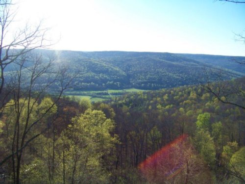 51.64+/-acres Panoramic Views : South Pittsburg : Marion County : Tennessee
