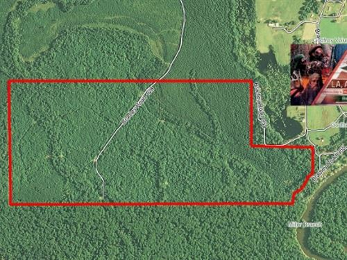 353 Ac - Hunting Tract Adjoining Fe : Crossett : Bradley County : Arkansas