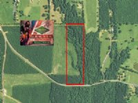 24.3 Ac - Nice Rural Home Site Trac : Vixen : Caldwell Parish : Louisiana