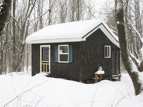 Cabin Stream Next To State Forest : Florence : Oneida County : New York