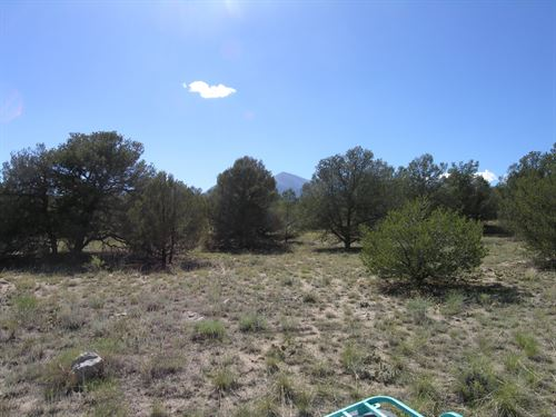 235664 Great Building Site With Pr : Salida : Chaffee County : Colorado
