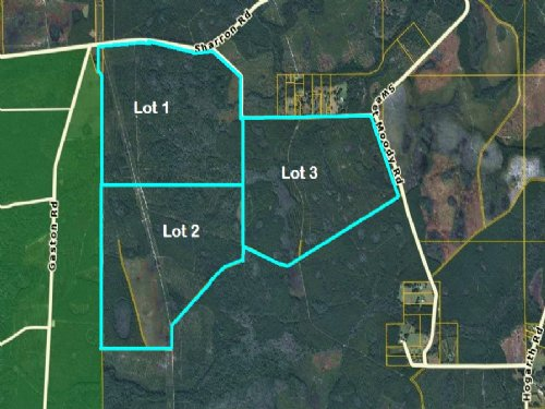 1499.86 Acres, Green Cove Lot 1-3 : Green Cove Springs : Clay County : Florida