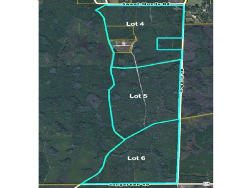 953.50 Acres, Green Cove- Lots 4-6 : Green Cove Springs : Clay County : Florida