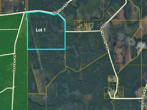 500 Acres, Green Cove #1 : Green Cove Springs : Clay County : Florida