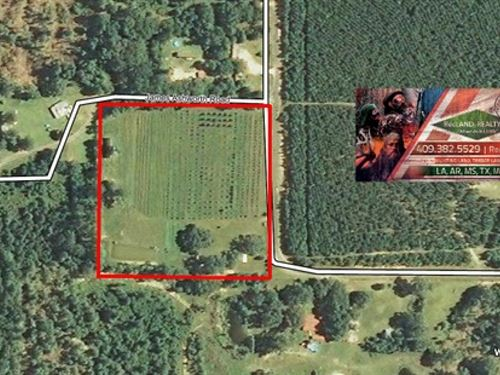10 Ac - Certified Natural/Organic F : Singer : Beauregard Parish : Louisiana