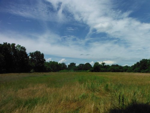 4 Commercial Acres In Panola County : Batesville : Panola County : Mississippi