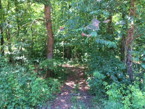 5.52 +/- Acres, Hiram, Bank Owned : Hiram : Paulding County : Georgia