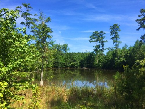 Port Preserve : Hardeeville : Jasper County : South Carolina