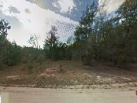 111 Maltas Ave, Interlachen, Fl : Interlachen : Putnam County : Florida