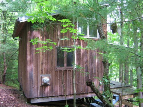 123 Acres Cabin Owner Financing : Spencer : Tioga County : New York