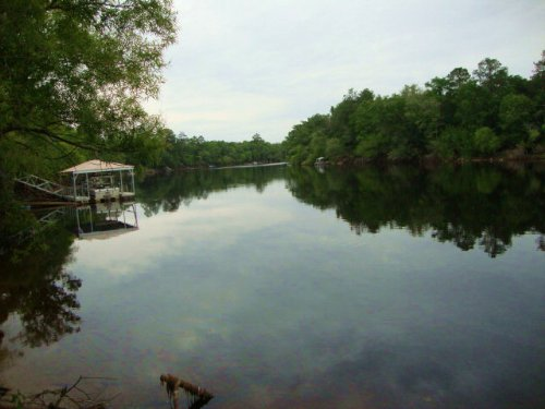 Suwannee River Waterfront 765325 : Old Town : Dixie County : Florida