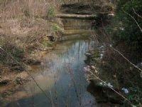 Residential / Farm / Development : Gainesville : Hall County : Georgia