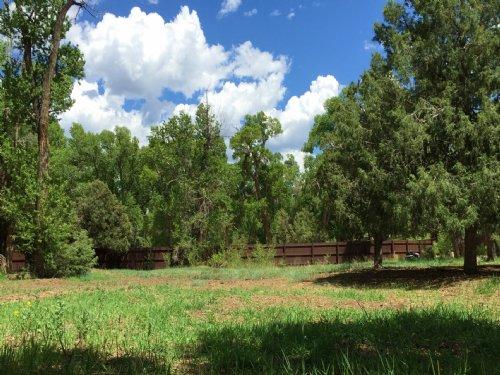 235620 - Gorgeous Lot. : Poncha Springs : Chaffee County : Colorado