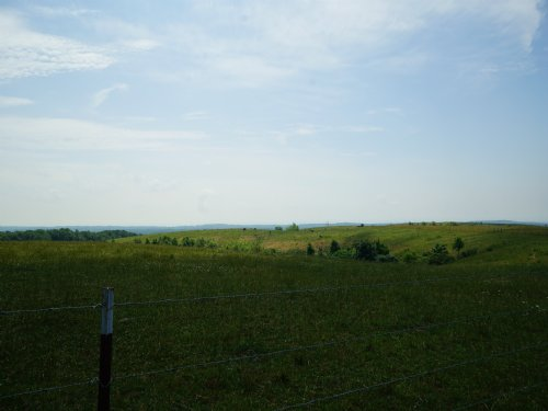 Pasture Land - Perfect For Horses : Grandview : Rhea County : Tennessee