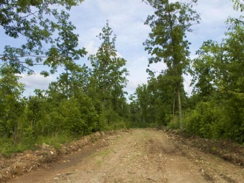 5.03 Acre Thunder Mountain Ranch : Birch Tree : Shannon County : Missouri