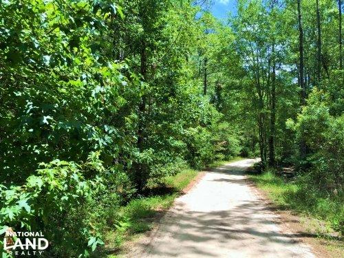 Great Satilla Preserve Lot 41 : White Oak : Camden County : Georgia