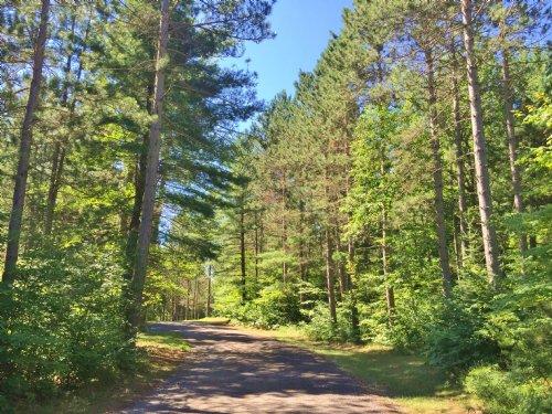 Ottertail Lane Escape : Minocqua : Oneida County : Wisconsin