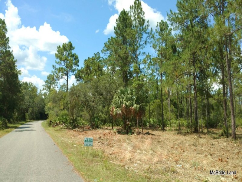 1 Acres In Ne Marion County, Fl : Land for Sale : Fort Mc ...