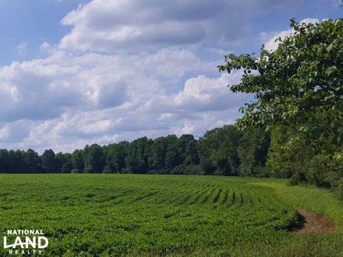 Wallace Rural Homesite : Wallace : Pender County : North Carolina