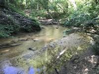 Stuart Tarter Rd Northside : Ozark : Dale County : Alabama