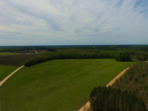 23 Acres Perfect Gentleman Farm : Reidsville : Tattnall County : Georgia