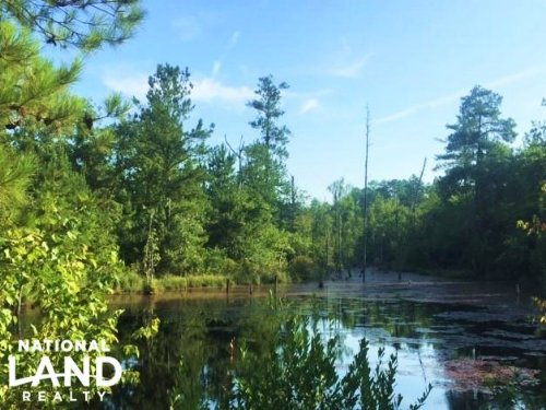 Hunting Property With Pond : Mauk : Marion County : Georgia