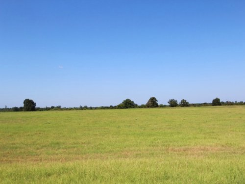 Exceptional Ranch For Sale : Bagwell : Red River County : Texas