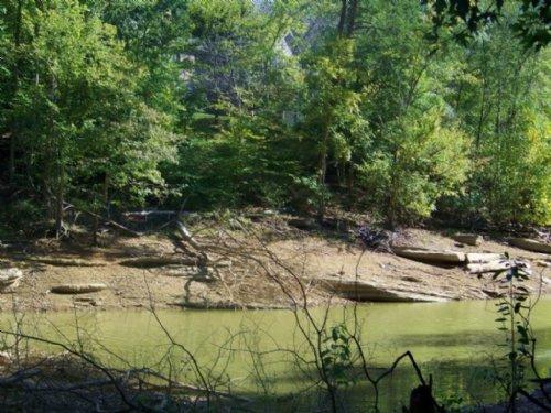 Seasonal Lake Front Lot On Cherokee : Mooresburg : Hawkins County : Tennessee