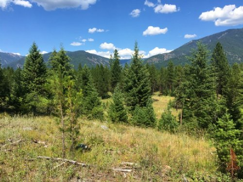 Runway Runaway : Trout Creek : Sanders County : Montana