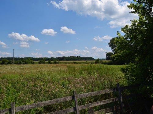 Wilson Rd - 4 Acres : Sunbury : Delaware County : Ohio