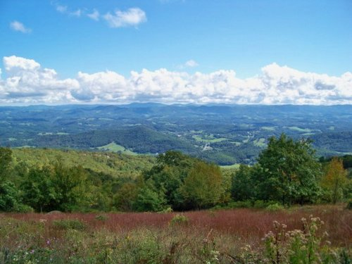 High Elevation Blue Ridge Property : Independence : Grayson County : Virginia
