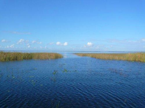 Estate Lots On East Lake Toho : Kissimmee : Osceola County : Florida