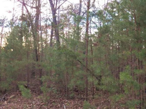 1.74 Acre Lot In Cartecay Ridge : Ellijay : Gilmer County : Georgia